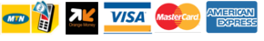 logo payement